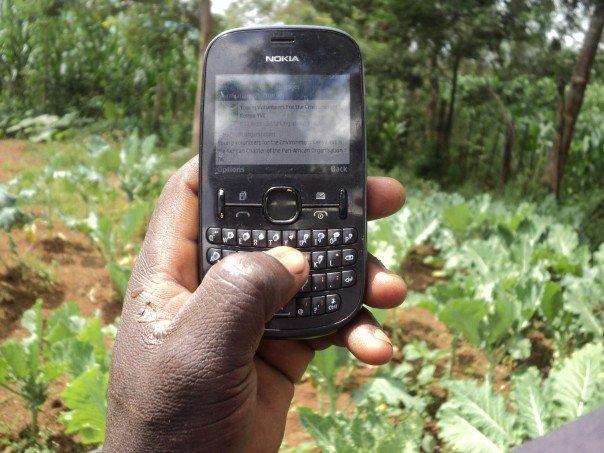 kenya farmers